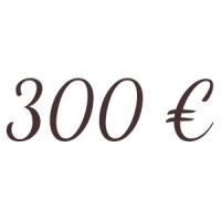 Bon de 300  €